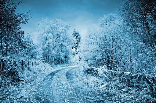 Winter, Frost, Snow, Cold, Frozen, Background, Road