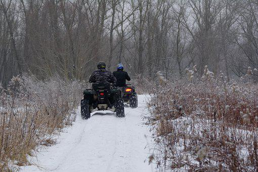 Atvs, Quad, Horse, Wilderness, Nature, At The Court Of