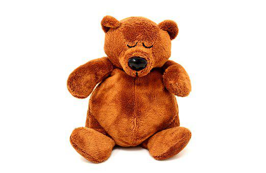 Teddy, Plush, Sleeping, Cute, Bear, Bears, Funny, Sweet