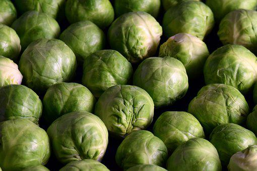 Brussels Sprouts, Vegetables, Green, Healthy