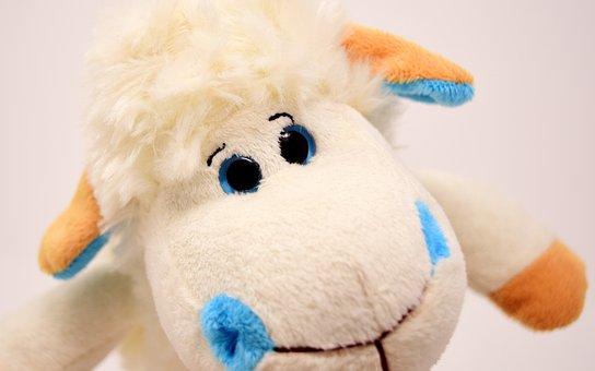 Sheep, Plush, Soft Toy, Fun, Toys, Funny, Teddy Bear