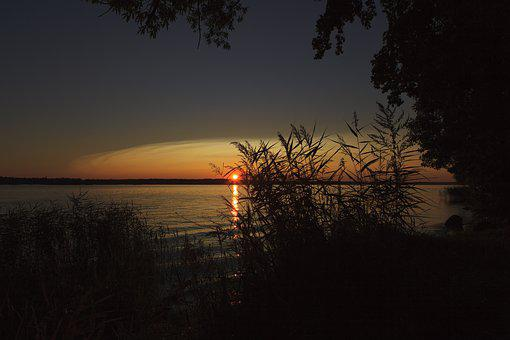 Sunset, Dawn, Twilight, Tree, Evening, Sun, Sky, Nature