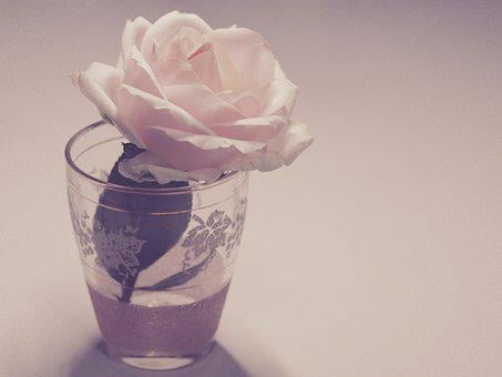 Flower, Vintage, Rose, Glass, Desktop, Retro, Floral