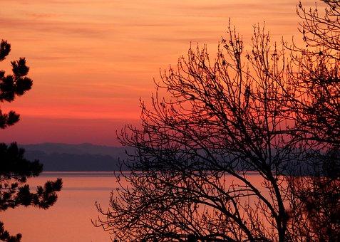 Sunset, Tree, Nature, Landscape, Lake, Winter