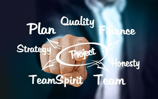 Businessman, Plan, Quality, Strategy, Team