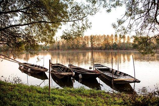Water, Nature, Tree, River, Wood, Barque Sur La Loire
