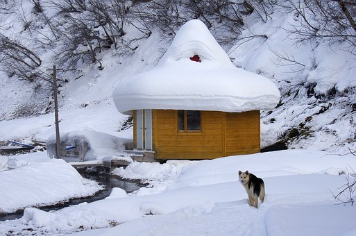 Winter, Hot Spring, Pairs, Fog, Snow, Frost, Cold
