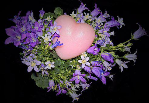 Flowers, Bluebells, Campanula