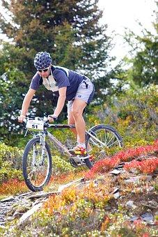 Wheel, Outdoors, Nature, Bike, Sport