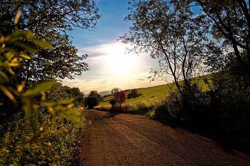Sun, Trees, Nature, Rays, Landscape, Path, Shadow