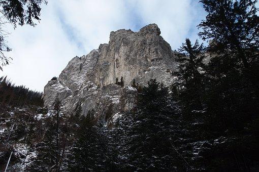 Nature, Panoramic, Tree, No One, Mountain