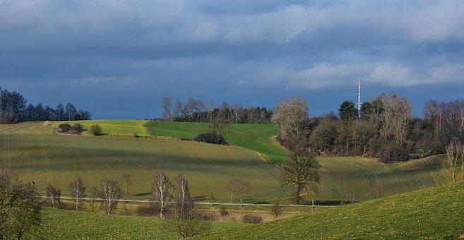 Nature, Grass, Landscape, Tree, Panorama, Sunlight