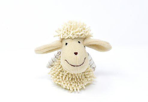 Sheep, Stuffed Animal, Cute, Schäfchen, Fun, Funny