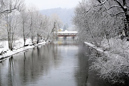 Winter, Snow, Waters, Tree, Nature