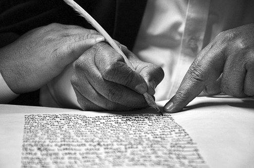 People, Adult, Hand, Man, Indoors, Human, Bible, Male