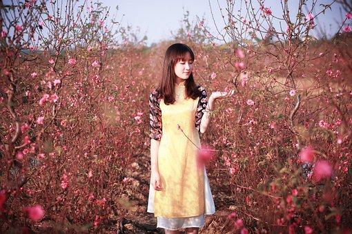 Nature, Outdoors, Tree, Season, Flower, Fall, Beautiful