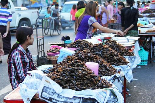 Chinatown, Selling, Fried, Cockroaches, Boisterous