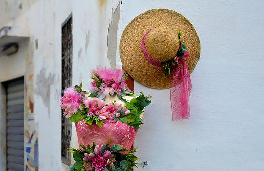 Flower, Summer, Color, Decoration, Flora, Beautiful