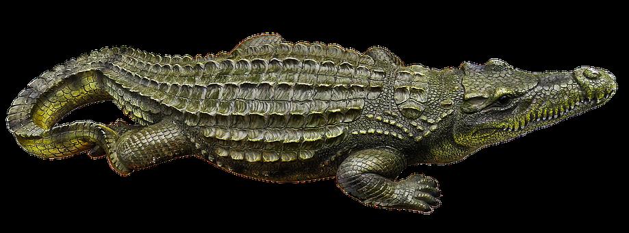 Crocodile, Metal Figure, Art Figure, Horticulture