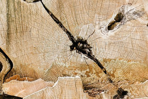 Nature, Pattern, Old, Wood, Annual Rings, Background