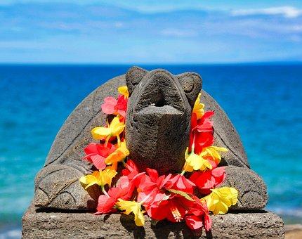 Turtle, Hawaii, Sea, Beach, Ocean, Coast, Holiday