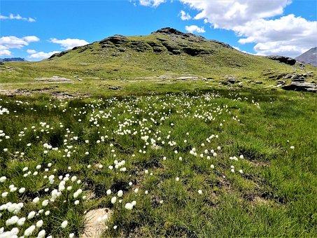 Nature, Landscape, Mountain, Grass, Panorama, Sky