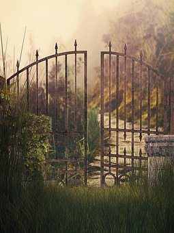 The Fence, At The Court Of, Nature, Sunset, Lawn