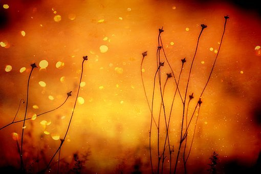 Background, Orange, Abstract, Pattern, Bright