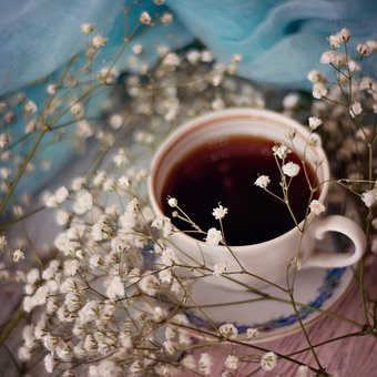 Drink, Cup, Hot, Coffee, Gypsophila, Flower, Tea