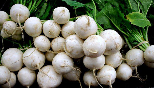 Root, Vegetable, White Turnip, Turnips, Roots, Turnip