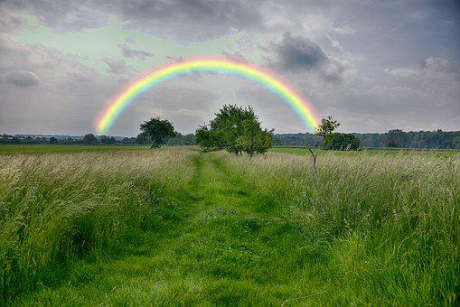 Rainbow, Grass, Nature, Landscape, Sky, Summer, Rural