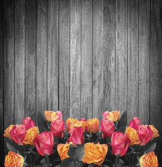 Background Wood, Flowers, Roses, Black And White