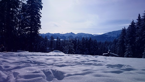 Snow, Winter, Nature, Cold, Frost, Mountains, Trees