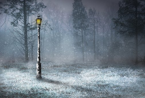 Snow, Outdoors, Nature, Woods, Lamp, Lamp Light, Frost