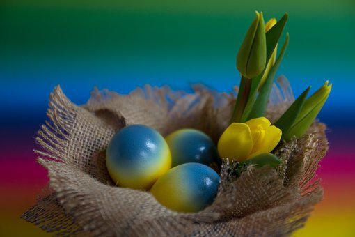 Easter, Egg, Color, Yellow, Blue, Flowers, Tulip