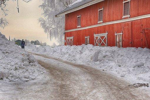 Snow, Winter, Frozen, Ice, Cold, Person