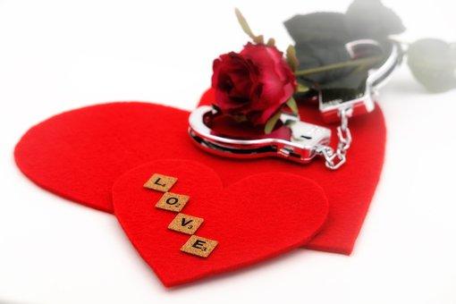 Love, Heart, Rose, Binding, Handcuffs, Flower, Blossom