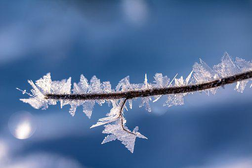 Eiskristalle, Frost, Frozen, Cold, Ice, Crystals