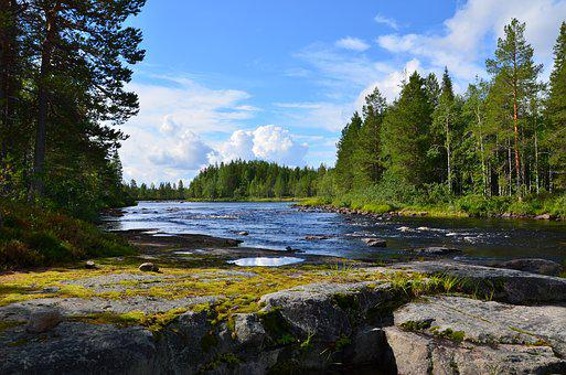 Outdoors, Landscape, River, Taiga, Karelia, North