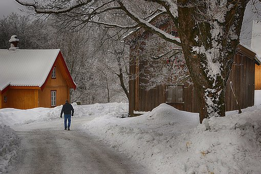 Snow, Winter, Cold, Wood, Frost, Person
