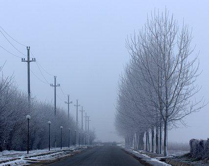 Street, Winter, Symmetry, Trees, Poles