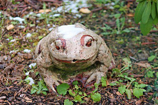 Frog, Garden, Ceramic, Nature, Figure, Frog Pond, Snow