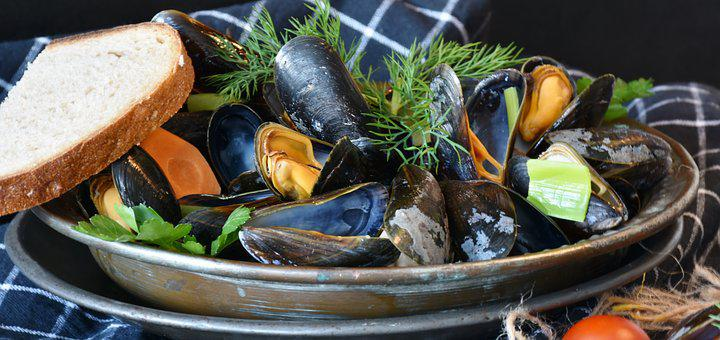 Mussels, Mussel, Common Mussel, Mytilidae, Cooked, Cook