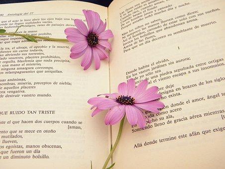Paper, Flower, Nature, Flora, Summer, Leaf, Retro, Love