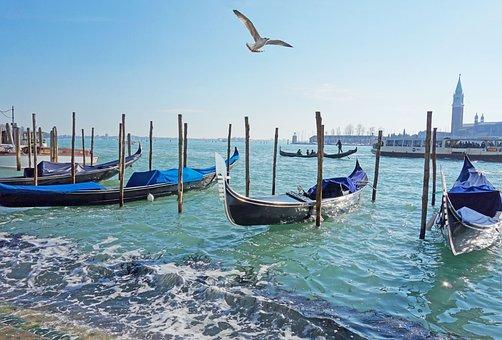 Venetia, Italy, Gondolas, Tourists, Birds, Hiking, Port
