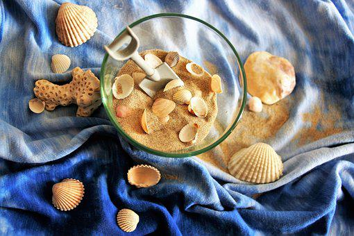 Shells, Sand, Holiday, Closeup, Texture, Imagination