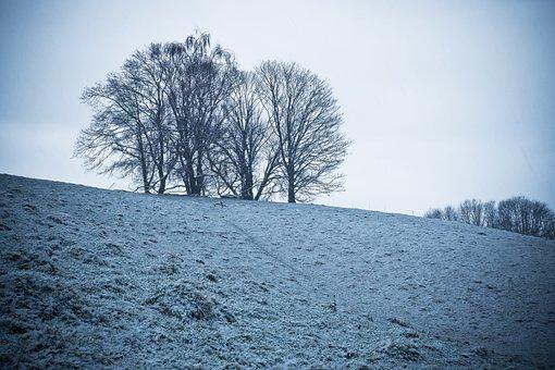 Nature, Landscape, Trees, Winter, Silhouette, Twilight