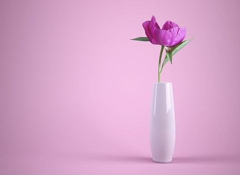 Flower, Flowerpot, Vase, Colorful, Pink, Thank You