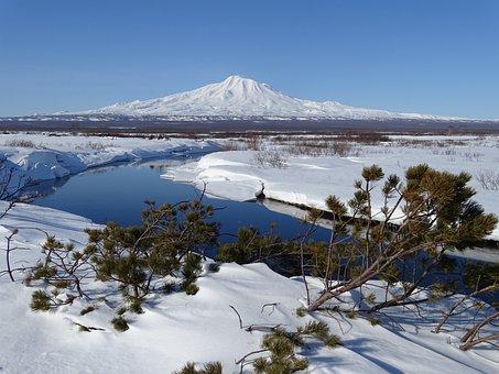 Volcano, Mountains, River, The Bushes, Cedar, Snow, Ice