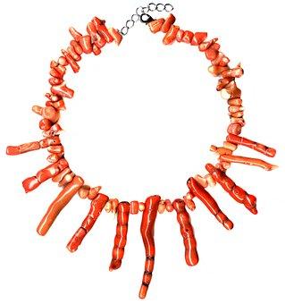 Coral, Fossil, Necklace, Choker, Orange, Genuine